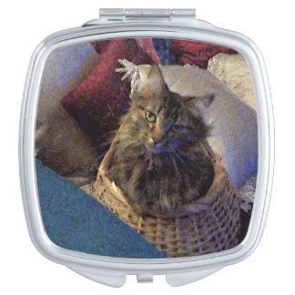 Schöne Tabby-Maine-Waschbär-Miezekatze-Katze in Taschenspiegel
