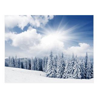 Schöne Winter-Landschaft mit Schnee Postkarte