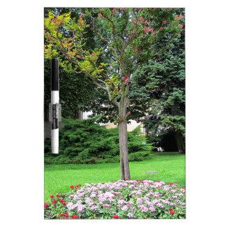 Schöner farbiger Garten. Sommerzeit Memoboards