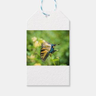 Schöner gelber Schmetterling Geschenkanhänger