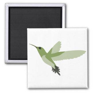 Schöner grüner Kolibri Quadratischer Magnet
