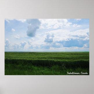 Schöner Tag im Grasland Poster