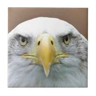 Schönes Adlerporträt Keramikfliese