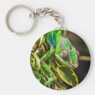 Schönes grünes Chamäleon Schlüsselanhänger