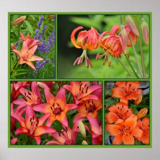 Schönes Liliencollagenplakat Poster