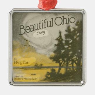 Schönes Ohio Silbernes Ornament