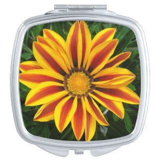 Schönes orange Sun-Blumen-Foto Schminkspiegel