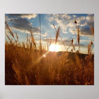 Schönes Plakat eines Sonnenuntergangs über einem