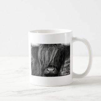 Schottisches Hochland-Vieh - Schottland Tasse
