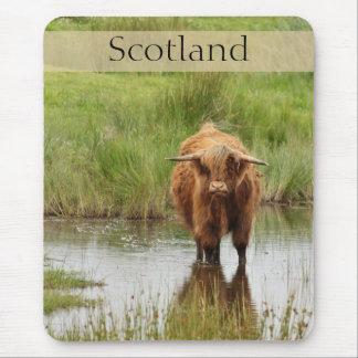 Schottland-Hochland-Kuh im Wasser-Foto Mousepads