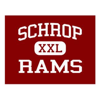 Schrop - RAMs - Schrop Sekundarschule - Akron Ohio Postkarte