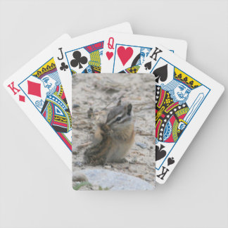 SchwanzChipmunk Pokerkarten