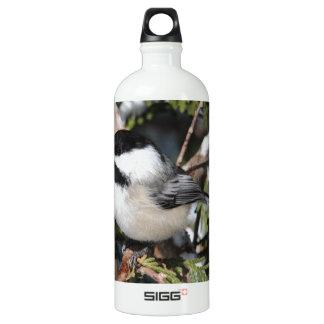 Schwarz-mit einer Kappe bedecktes Cickadee Wasserflaschen