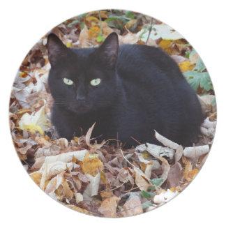 Schwarze Katze Herbst verlässt Melamin-Platte Teller
