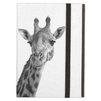 Schwarze u. weiße Giraffe