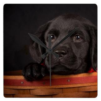Schwarzer labrador retriever-Welpe in einem Korb Quadratische Wanduhr