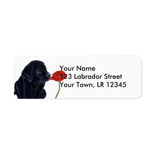 Schwarzer Labradorwelpe und -mohnblume