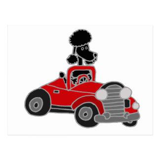Schwarzer Pudel, der rotes konvertierbares Auto Postkarte
