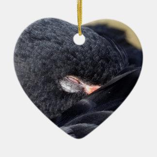 Schwarzer Schwan Schlafens Keramik Ornament