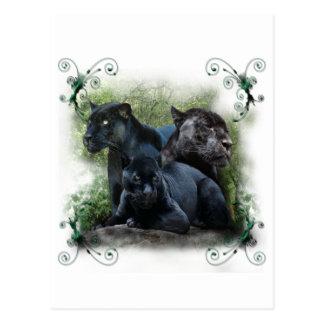 Schwarzes Jaguar Postkarte