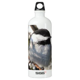 Schwarzes mit einer Kappe bedeckter Chickadee Aluminiumwasserflaschen