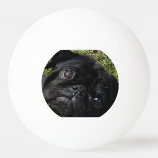 SchwarzMops eyes.png Tischtennis Ball