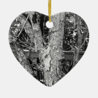 Schwarzweiss-Baum-Natur-Foto Keramik Ornament