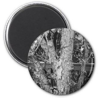 Schwarzweiss-Baum-Natur-Foto Runder Magnet 5,1 Cm