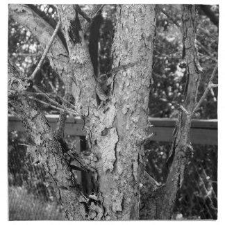 Schwarzweiss-Baum-Natur-Foto Serviette