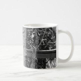 Schwarzweiss-Baum-Natur-Foto Tasse