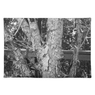 Schwarzweiss-Baum-Natur-Foto Tischset
