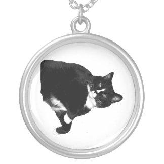 Schwarzweiss-Katze, die oben Ausschnitt schaut Versilberte Kette