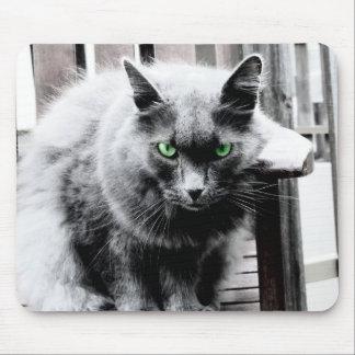 Schwarzweiss-Katze mousepad
