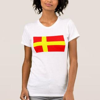 Schwedische sprechende ethnische Flagge T-Shirt