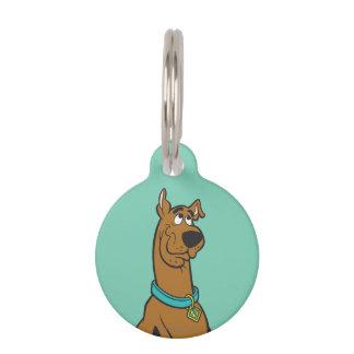 Scooby Doo Pose 27 Tiermarke Mit Namen