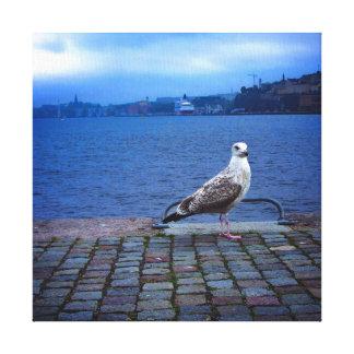 Seagull in Stockholm Square Gespannter Galeriedruck