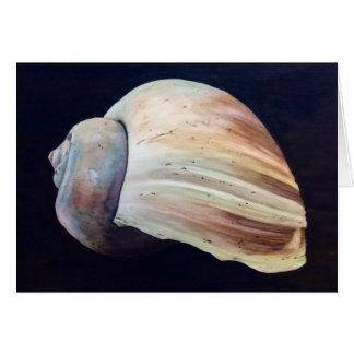 Seashell Karte