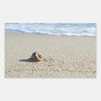 Seashell Rechteckiger Aufkleber