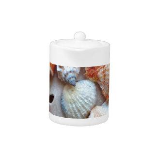 Seashells durch die Küste
