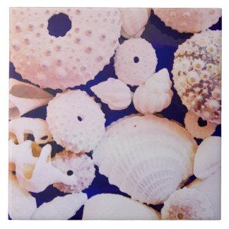 Seashells Fliese