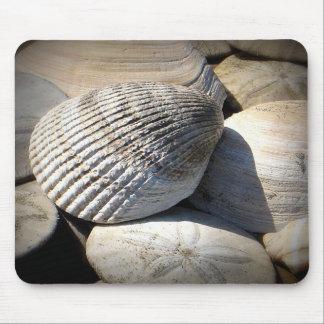Seashells Mousepad