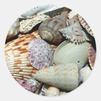 Seashells Runder Aufkleber