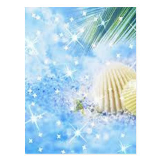 seashels glänzend postkarte