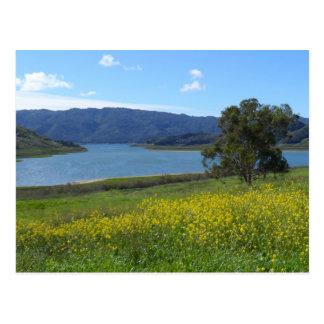 See Casitas- Ojai, CA Postkarte
