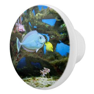 Seeblau-Fische Keramikknauf