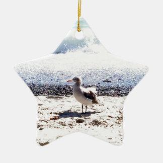 Seemöwe durch den Ozean auf dem Strandbild Keramik Stern-Ornament