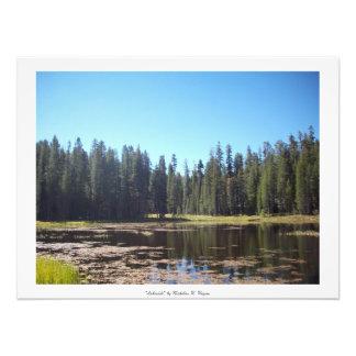 """Seeufer"" Yosemite Kunstphoto"