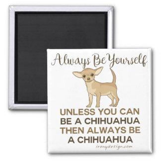 Seien Sie immer Chihuahua Quadratischer Magnet