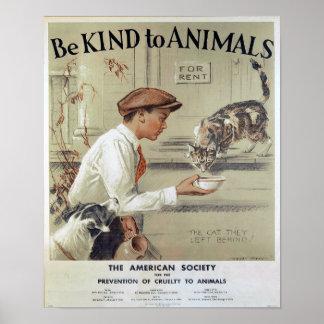 Seien Sie zu den Tier-Katzen nett Poster