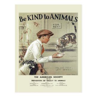 Seien Sie zu Vintager Postkarte #2 Tiere USA nett